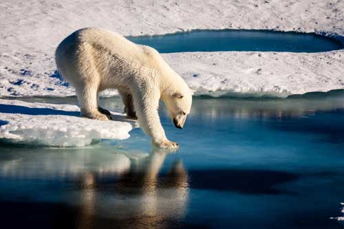 Wind, Sea Ice Changes Suggest Climate Change in Western Arctic
