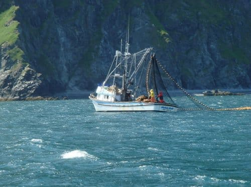Alaska Salmon Harvest Passes 160 Million