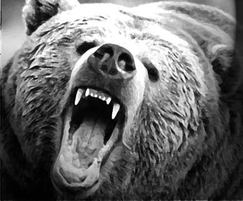 Kodiak Man Injured in Bear Attack on Pillar Mountain Trail Sunday