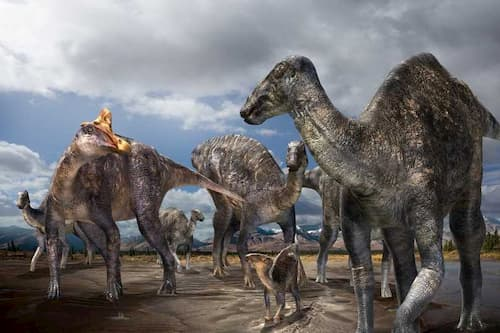 First Lambeosaurine Dinosaur from the Arctic Discovered