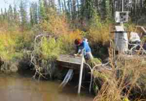 Undergraduate intern Adela Contreras performs maintenance on water quality sensors at a sampling site on French Creek in the Yukon Training Area near Eielson Air Force Base. Photo by Tamara Harms