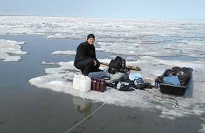 Hidden Source of Carbon Found on the Arctic Coast