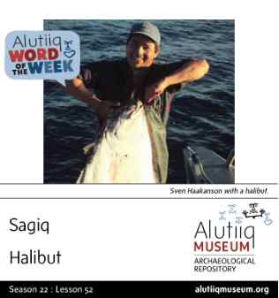 Halibut-Alutiiq Word of the Week-June 21