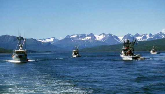 Alaska Sea Grant Lands Gift to Boost Commercial Seafood Harvesters