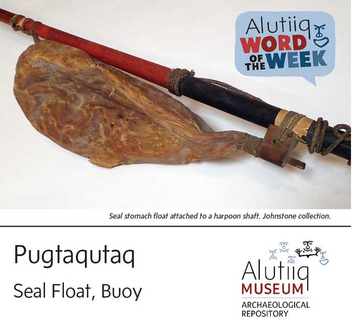 Seal Float-Alutiiq Word of the Week-April 25th