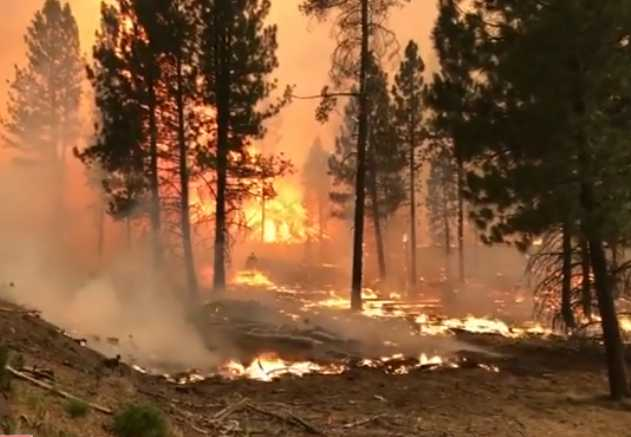 Oregon's Growing Bootleg Fire is One of 70 Now Raging in US West, Where Another Heatwave Looms
