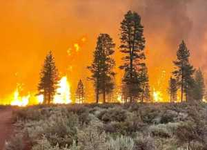 The Bootleg Fire burns on July 12, 2021 in Bly, Oregon. (Photo: USDA Forest Service)