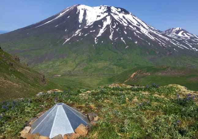 Korovin Volcano Set at Yellow with Seismic Activity and Sulfur Emissions