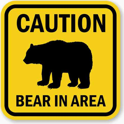 Bear activity necessitates temporary closure of Teklanika Campground