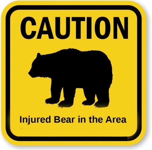 Troopers Warn Public of Injured Bear on West Rezanof