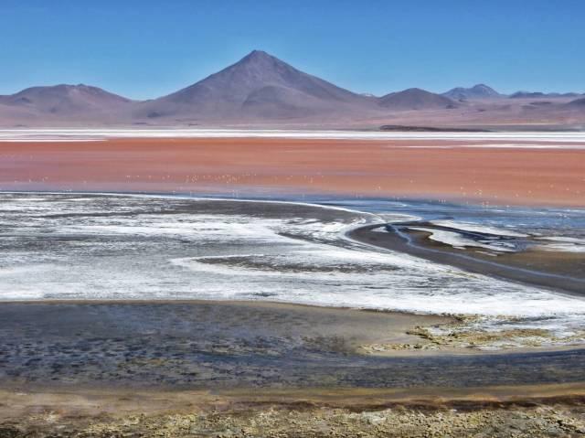 Laguna Colorada, punainen väri tulee levästä. Järvessä majailee kolme eri lajia flamingoja.