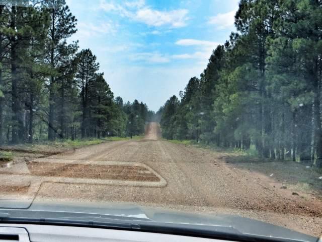 Välillä mentiin pitkät pätkät hiekkatietä. Tässä Route 66:n korkein kohta, 2258 metriä merenpinnasta.