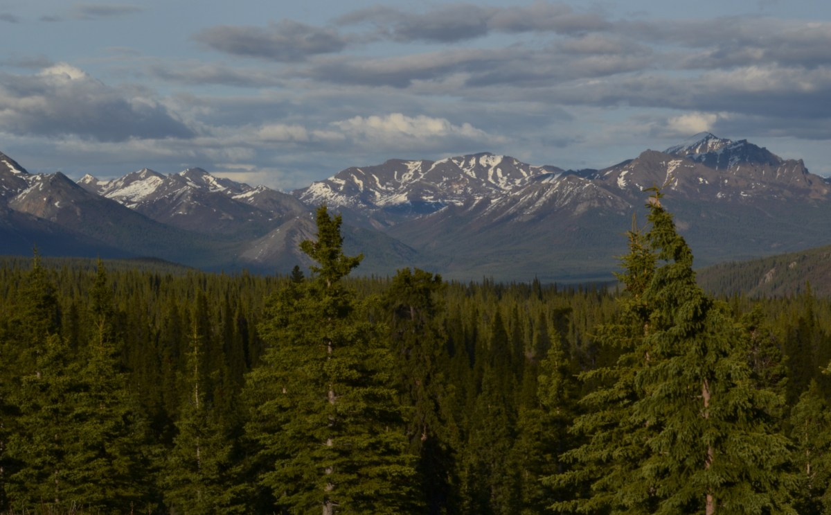 The Landscape of Denali National Park and Preserve