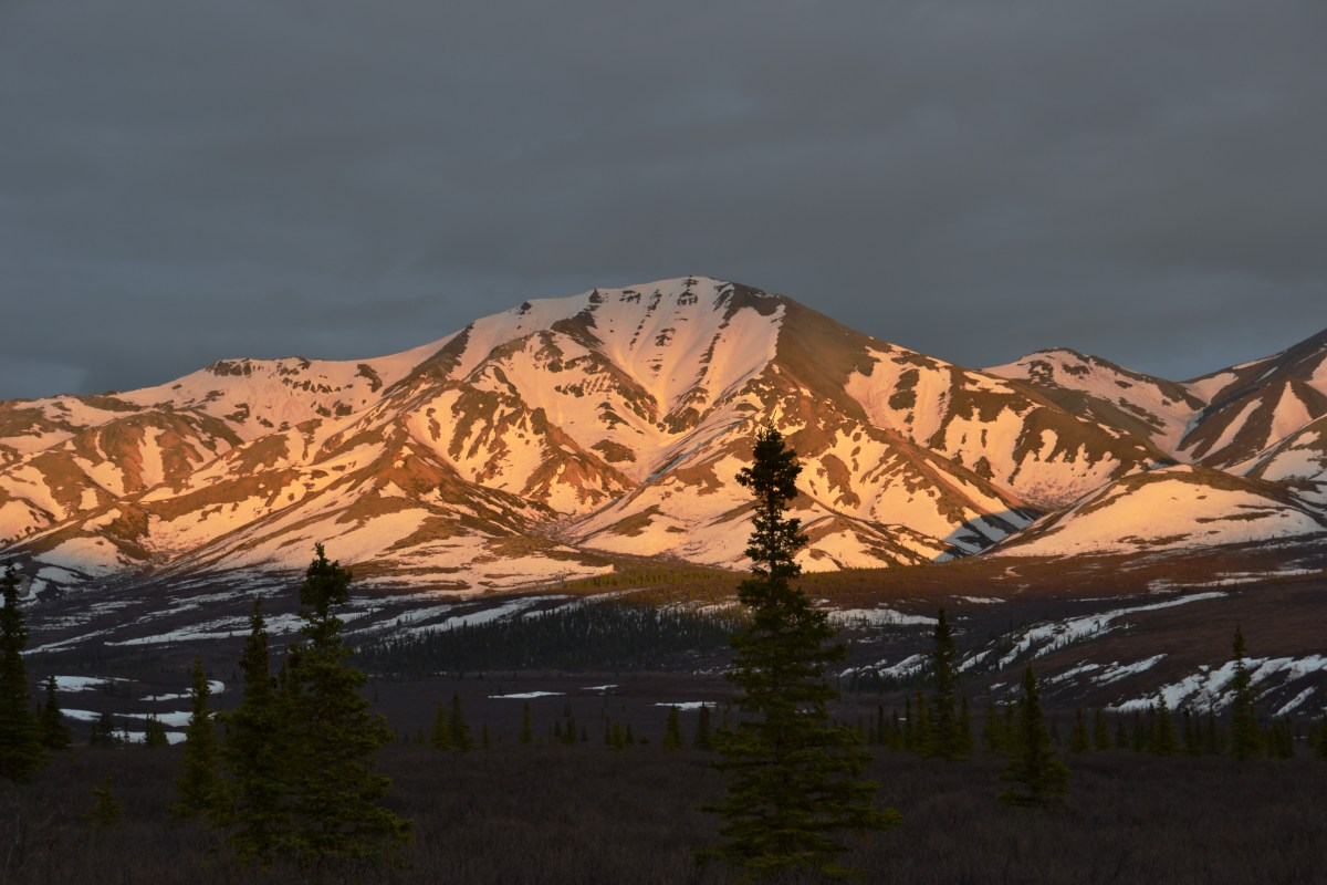 Sunset in Denali National Park and Preserve