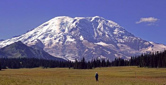 Mount Rainier Perspective