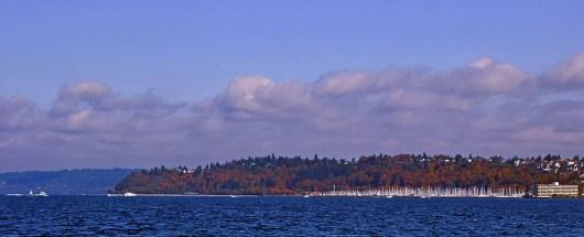 View of Shilshole Bay Marina