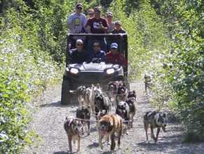 Family on Alaska sled dog ride