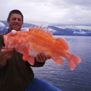 Board of Fish back in Anchorage March 6-9