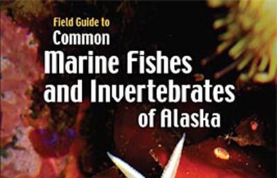 marine invertebrates of alaska
