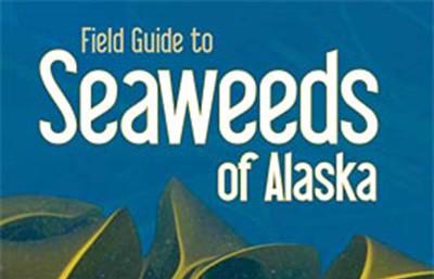 seaweeds of alaska