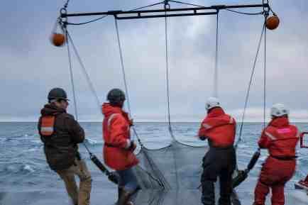 Aboard the R/V Sikuliaq