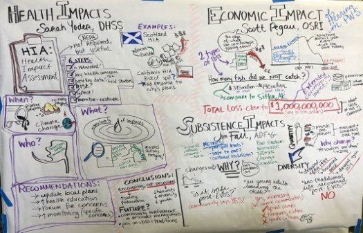 Words and images drawn on a big sheet of paper to illustrate topics discussed during a meeting