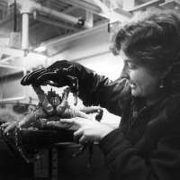 Judy McDonald with a king crab in the lab.