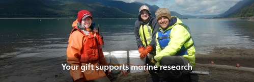 Professor and students researching fish diets in Southeast Alaska