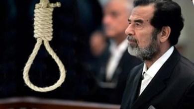صورة جحوش صدام… والحنين الى عودة صدام…