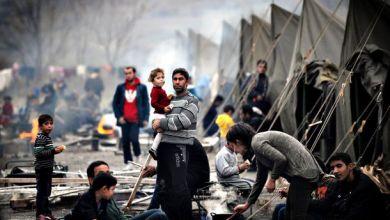 صورة اللاجئون الفلسطينيون:  شكرا تركيا