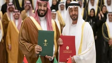 صورة المشروع الإماراتي ــــ السعودي والهواجس الخليجيّة