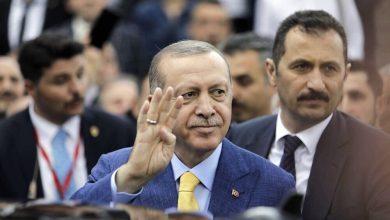 صورة اردوغان والاخوان بين سكين ابراهيم ونبوءة اوديب.. هل سيأكل الأب أبناءه؟