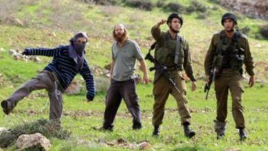 صورة العصاباتُ الصهيونيةُ تجددُ إرثَها القديمَ وعدوانَها الأثيمَ