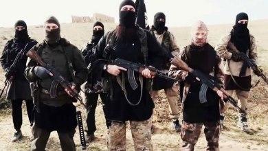 صورة مفهوم الإرهاب في القاموس السياسي الأمريكي