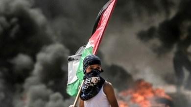صورة فلسطين قضية الأمة التي تسيل دماء اليمنيين من أجلها