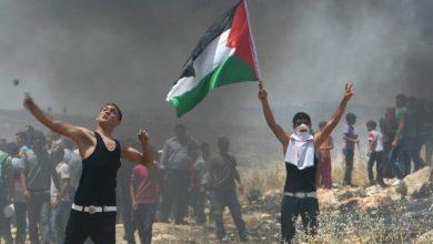 صورة الانتفاضة الفلسطينة تنتصر وتلقن العدو الصهيوني ضربات حيدرية موجعه