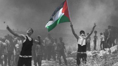صورة انتصرت المقاومة الفلسطينية ومازالت الحرب الصهيونية مستمرة