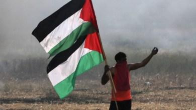 """صورة """"قلب العرب فلسطين"""""""
