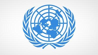 صورة الأمم المتحدة …وتصنيفاتها المزدوجة