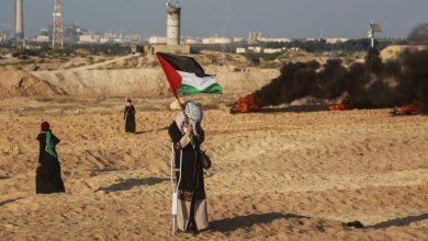 صورة غزةُ بينَ تجميدِ العملياتِ الحربيةِ وتكثيفِ الأنشطةِ الأمنيةِ