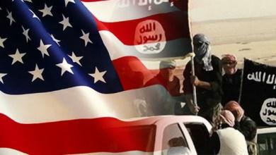 صورة سقوط رهانات الامريكان على القاعدة وداعش بالعدوان على اليمن
