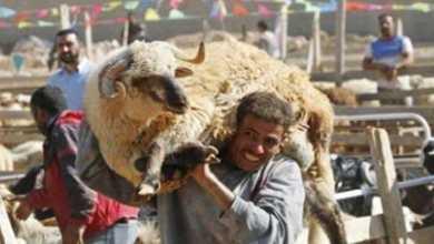 صورة اليمنيون وعيد الأضحى.. عدوان وحصار مفروض وحجآً ممنوع!!
