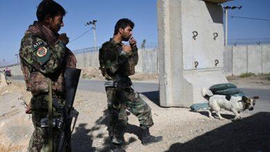 صورة من افغانستان الى العراق..وحدة الدرس..!