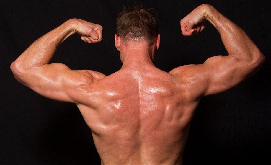 Cara Latihan Membentuk Otot Bahu