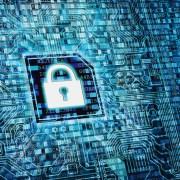 Le traitement des données personnelles. Crédits : Nmedia-Fotolia.