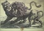 Lion et panthère