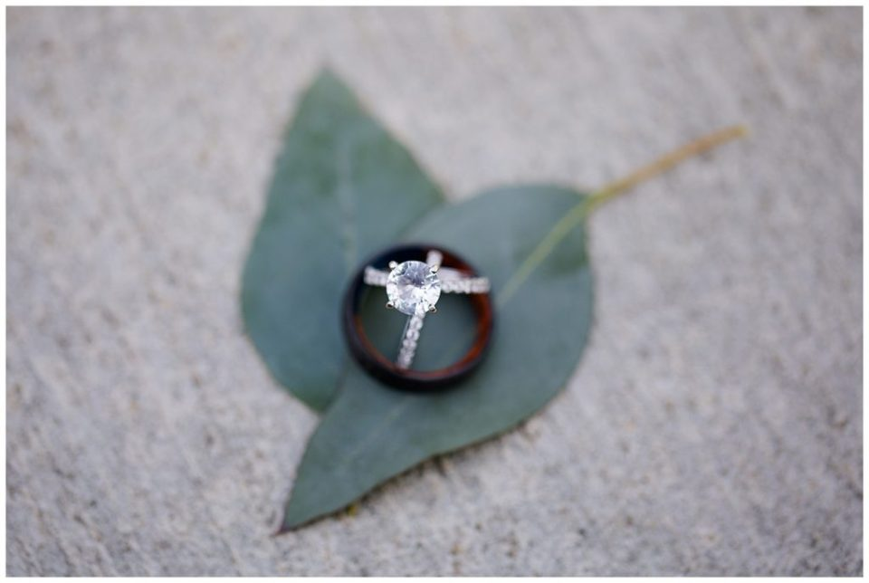 A photograph of a closeup look of the beautiful wedding rings resting on green leaves at the Cedar Grove Lodge venue in Hocking Hills, Ohio by Columbus OH wedding photographer, Alayna Parker Photography