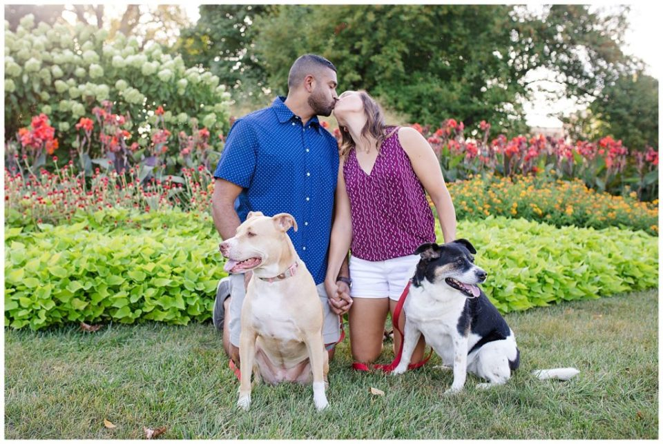 An image of an engaged couple kneeling outside and kissing each other as their two pet dogs sit nearby at the Columbus Franklin Park Conservatory by Alayna Parker  - Columbus Ohio engagement photography