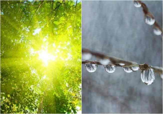 meteo, soare, ploaie