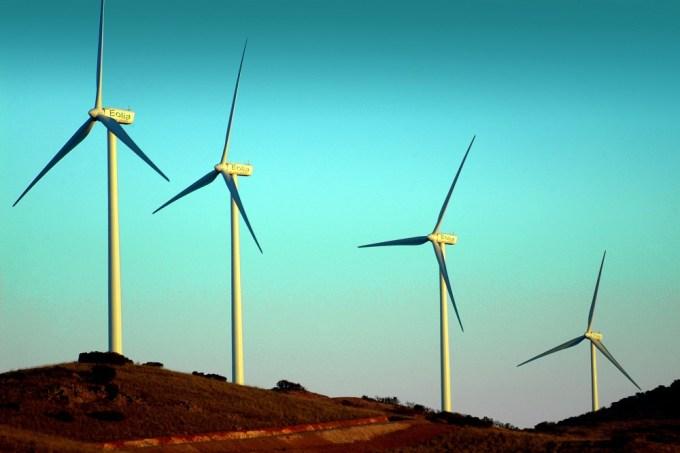 Cuando la proliferación de parques eólicos también supone un perjuicio ambiental